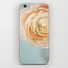 Give Me Forever iPhone & iPod Skin