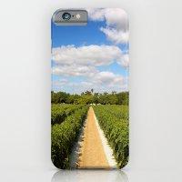Tomato Fields  iPhone 6 Slim Case