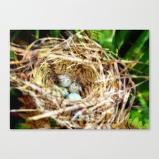 Birds :: Our Nest Canvas Print