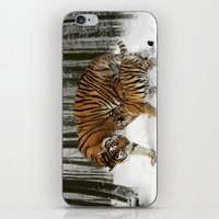 Tigers iPhone & iPod Skin