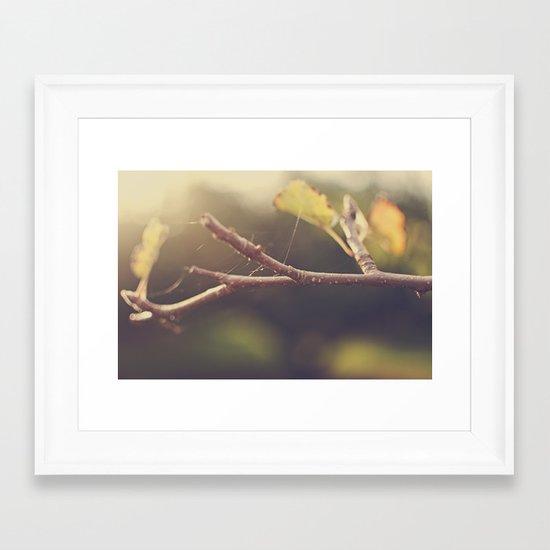 Apple Tree in the Fall Framed Art Print