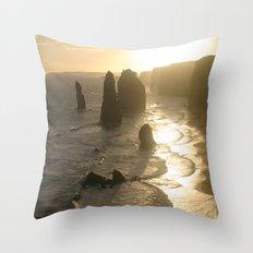 Evolutionary history of life on Earth  Throw Pillow