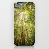 Forest Tree Tops iPhone 6 Slim Case