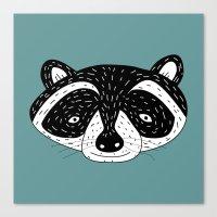 racoon! Canvas Print
