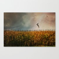 Soaring on the edge of a storm Canvas Print