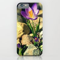iPhone & iPod Case featuring Springtime by Brittany Hart