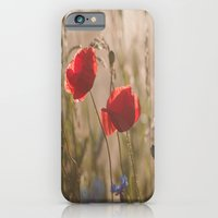 iPhone & iPod Case featuring Poppy in sunrise my world by Tanja Riedel