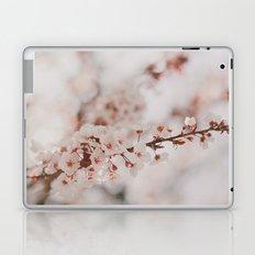 Vanilla Laptop & iPad Skin