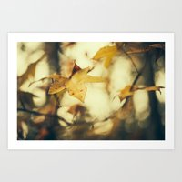 Louisiana Fall Art Print