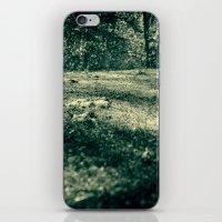 Frozen Day N.4 iPhone & iPod Skin