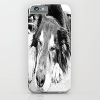 iPhone & iPod Case featuring Tired Old Dog by Kim Ramage