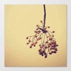 Autumn life (IV) Canvas Print