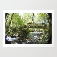 Bridal Veil Falls OR Forest Bridge Art Print