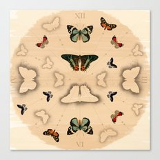 Butterfly Coordinates Canvas Print
