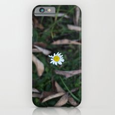 The Lone Flower iPhone 6 Slim Case