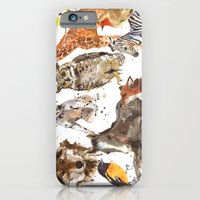 iPhone & iPod Case featuring Animal Menagerie by eastwitching