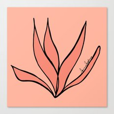 A Flower from San Francisco  Canvas Print