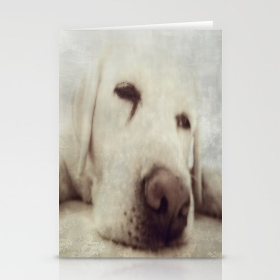 Pooch Stationery Card