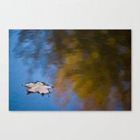 Lonely Reflection Canvas Print