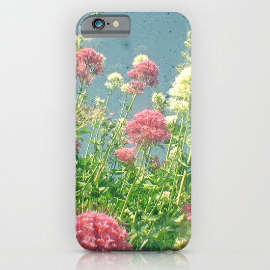 Raspberries and Cream iPhone & iPod Case