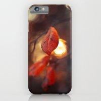 iPhone & iPod Case featuring Autumn Light by Ekaterina La