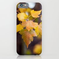Autumn Yellow iPhone 6 Slim Case