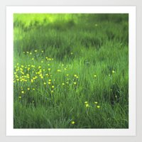 Art Print featuring yellow flowers by sandra lee russell