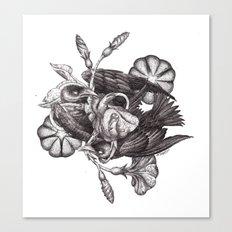 Some Birds... Canvas Print