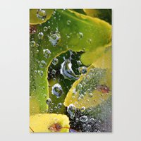 PhotoYero Canvas Print