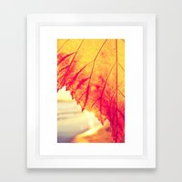 Autumn - Framed Art Print