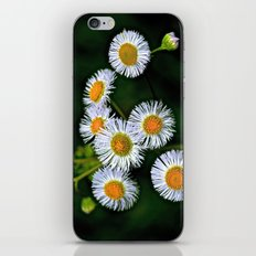 Flowerworks iPhone & iPod Skin