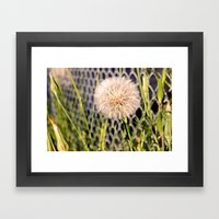 Oversized Puff - Ready to break apart and fly away. Framed Art Print