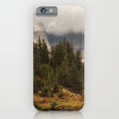 Moody Morning in the Wyoming Wilderness iPhone 6 Slim Case