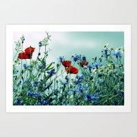 Cornflowers, Poppies And… Art Print