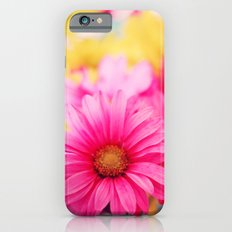 Gerbera Daisies II Slim Case iPhone 6s