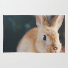 Bunny Rug