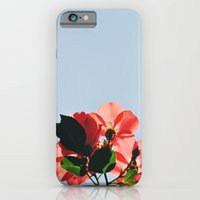 iPhone & iPod Case featuring Rose by goguen