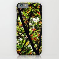 Leaves and Branches 2 iPhone 6 Slim Case