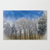 The Morning After Canvas Print