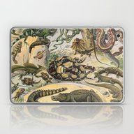 Laptop & iPad Skin featuring Reptiles, Nouveau Larous… by Chateau Partay
