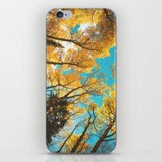 Rocky Mountain Autumn iPhone & iPod Skin