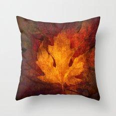 Cycle Modern Seasonal Art Design Photograph Throw Pillow