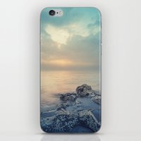 Barnacle Point iPhone & iPod Skin