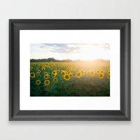 Sunflower Day Framed Art Print