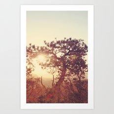 Bryce Canyon, A.M. Art Print