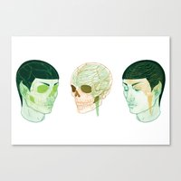 Vulcanatomy Canvas Print