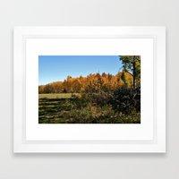 Peacefulness  Framed Art Print