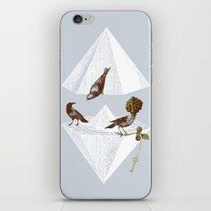Guardian of Secrets iPhone & iPod Skin