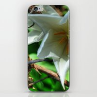 Flower - HDR iPhone & iPod Skin