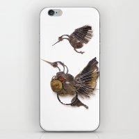Rad's Hummingbirds iPhone & iPod Skin